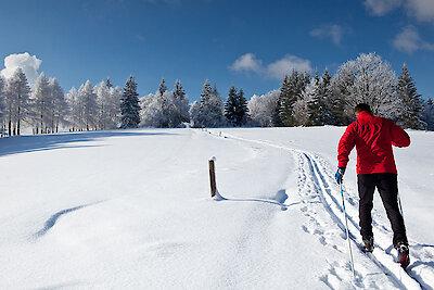 Langlauf in Sankt Englmar